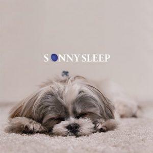 Come dormire