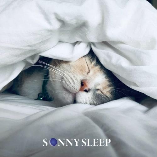 Dormire poco: 5 conseguenze e cause comuni