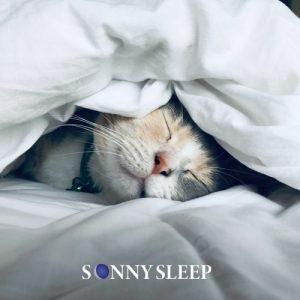 prodotti per dormire