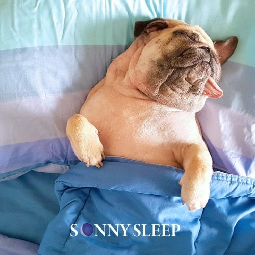 Sonno profondo: 5 tecniche per crollare